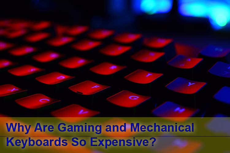 Why are gaming and mechanical keyboards so expensive
